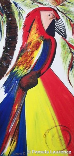 Parrot-frameless-600-watermarked